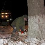 Начальник чепецкого предприятия признался в незаконной вырубке 434 деревьев