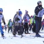 Истринцы завоевали медали в «Лыжне России-2015»