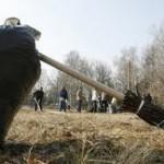 Московская область готовится к главному областному субботнику